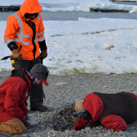 Researchers collecting beach sediments to understand the age of the islands and beaches, Antarctica