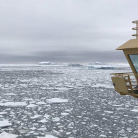 Sea ice near Peter I Island, Antarctica. Photo Credit: Julia Wellner